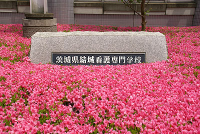 『茨城県結城看護専門画工の石碑』の画像